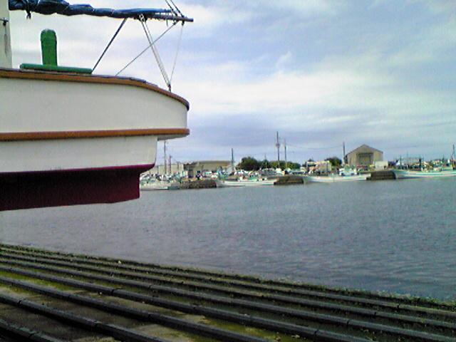 今日は漁港
